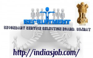 Gujarat-Secondary-Service-Selection-Board-GSSSB-Recruitment-2014